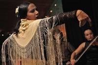 Att göra i Marbella - Se Flamenco dans