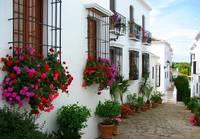 Att göra i Marbella - Gå runt i galma stan